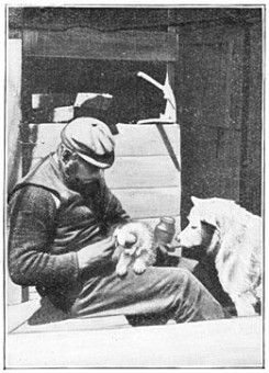 Members of the Antarctic Expedition: Human and Sled Dogs