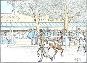 The Horse Market